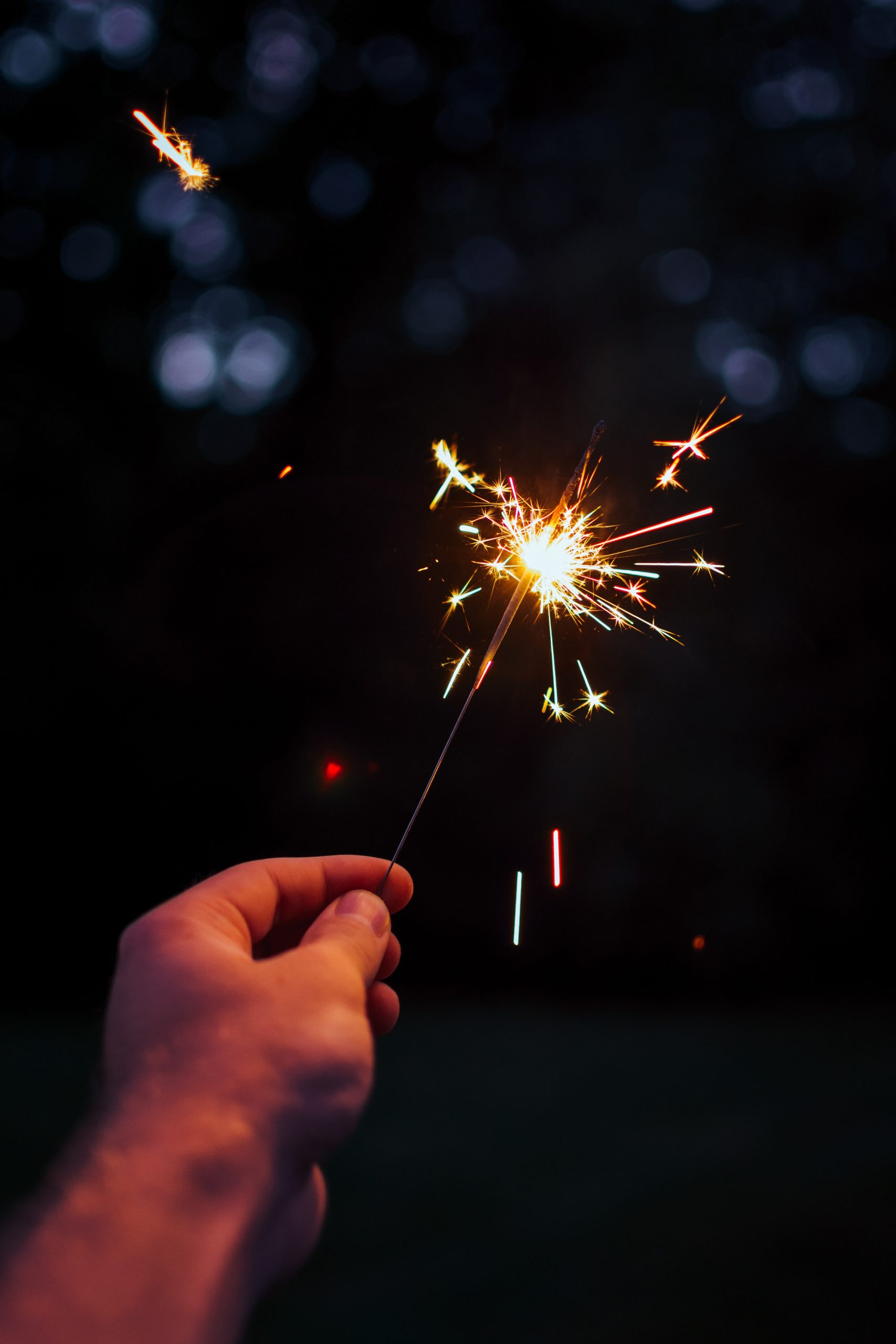 Joyeuse année 2021 à toutes et à tous !